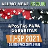 Apostas para Gabaritar o TJSP 2021 | Direito Processual Penal
